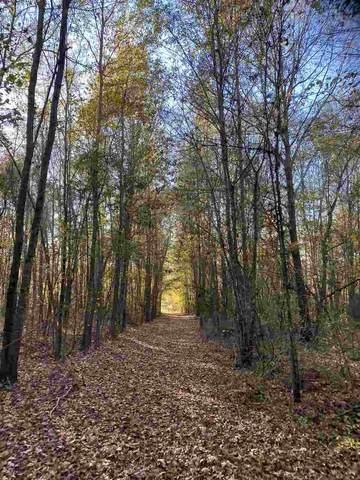 0 Hwy 79, Deberry, TX 75639 (MLS #20206089) :: Wood Real Estate Group