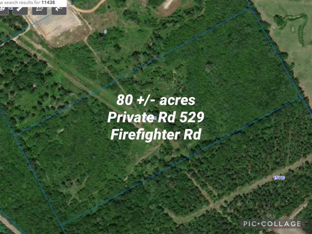 TBD Private Road 529, Gary, TX 75643 (MLS #20210927) :: Better Homes and Gardens Real Estate Infinity