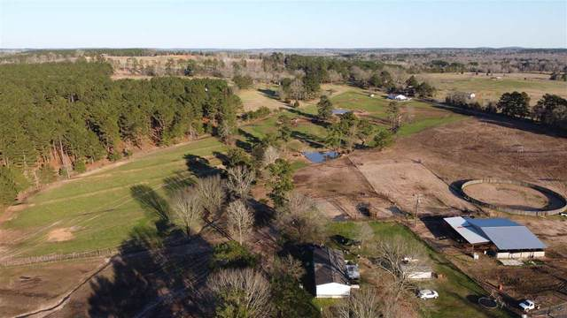4568 W Cr 447, Laneville, TX 75667 (MLS #20211024) :: Better Homes and Gardens Real Estate Infinity