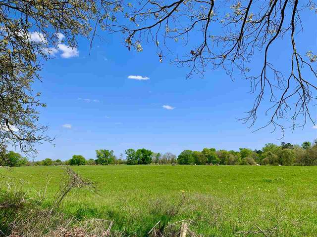 30003 W Hwy 49, Jefferson, TX 75657 (MLS #20211653) :: Better Homes and Gardens Real Estate Infinity