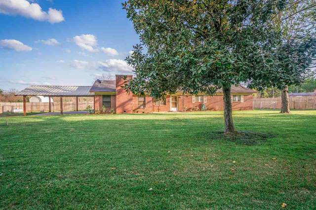 177 County Road 205, Carthage, TX 75633 (MLS #20211692) :: Better Homes and Gardens Real Estate Infinity