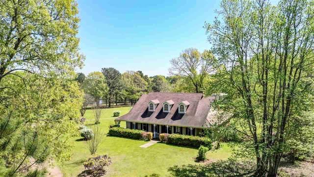 105 Pr 1227, Waskom, TX 75692 (MLS #20211749) :: Wood Real Estate Group