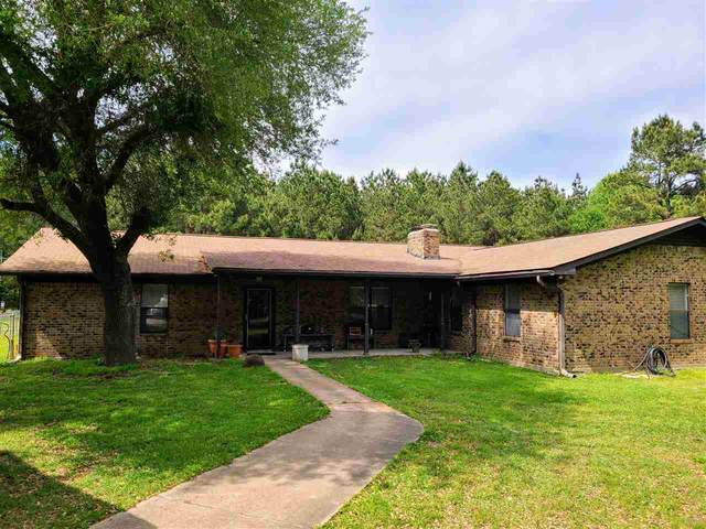 2223 E Fm 1794 E, Deberry, TX 75639 (MLS #20211937) :: Better Homes and Gardens Real Estate Infinity