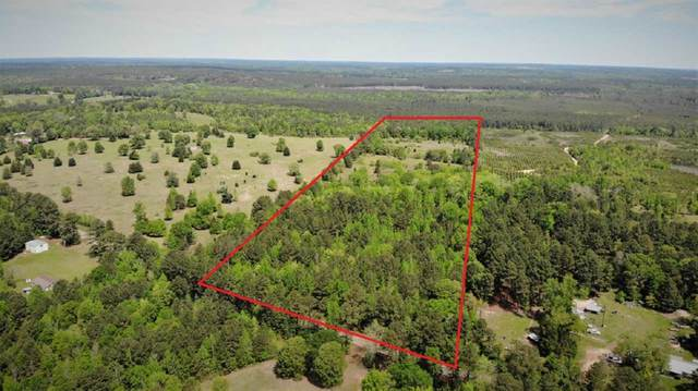 TBD Fm 125, Kildare, TX 75562 (MLS #20211952) :: Better Homes and Gardens Real Estate Infinity