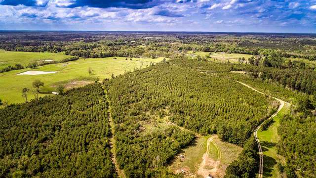 TBD Cr 1212, Gary, TX 75643 (MLS #20212010) :: Better Homes and Gardens Real Estate Infinity