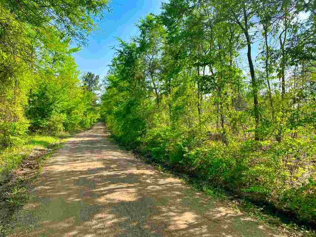12.69 ac Hwy 43, Jefferson, TX 75657 (MLS #20212107) :: Better Homes and Gardens Real Estate Infinity