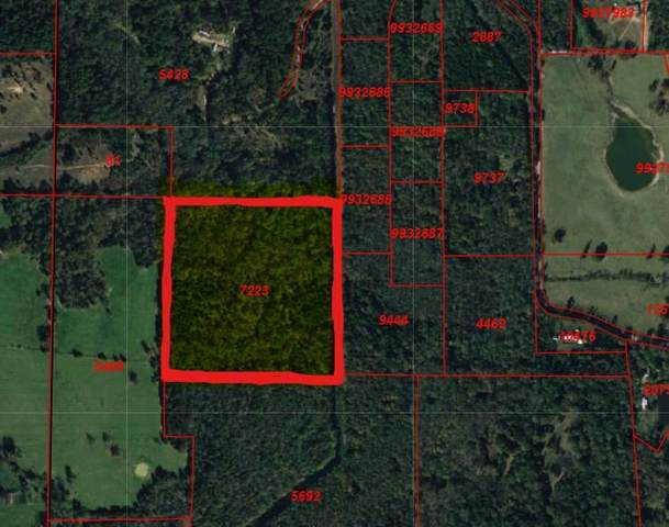 TBD County Road 2210, Pittsburg, TX 75686 (MLS #20212208) :: Better Homes and Gardens Real Estate Infinity