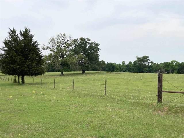tbd Fm 3053, Kilgore, TX 75662 (MLS #20212211) :: Wood Real Estate Group