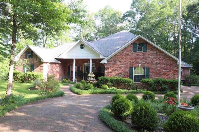 317 Dolores, Marshall, TX 75672 (MLS #20212251) :: Wood Real Estate Group