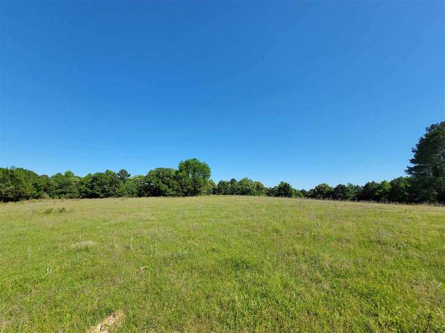 Hwy 77 W Na, Douglasville, TX 75560 (MLS #20212298) :: Better Homes and Gardens Real Estate Infinity