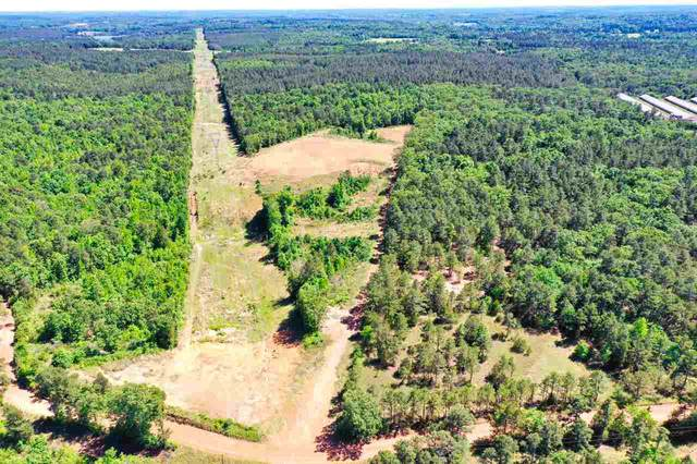 25.33 AC Cr 2928, Hughes Springs, TX 75656 (MLS #20212332) :: Better Homes and Gardens Real Estate Infinity