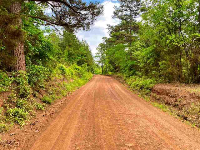 8.9 AC Cr 2928, Hughes Springs, TX 75656 (MLS #20212333) :: Better Homes and Gardens Real Estate Infinity
