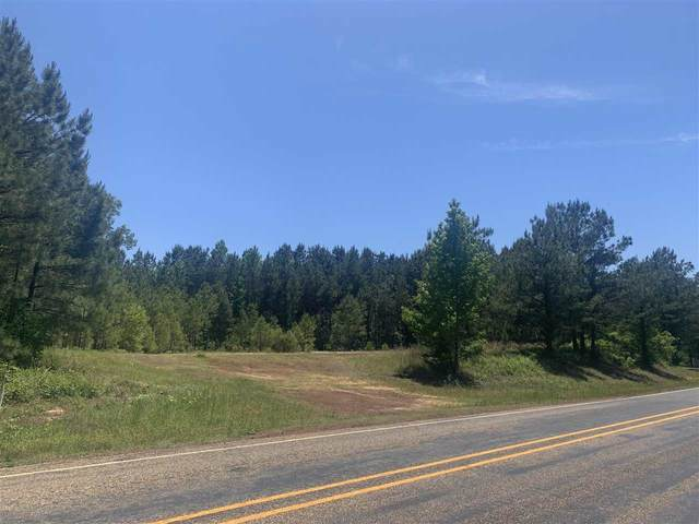 TBD Fm 125, Bivins, TX 75555 (MLS #20212362) :: Better Homes and Gardens Real Estate Infinity