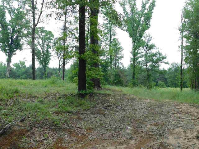 TBD Mimosa, Gilmer, TX 75644 (MLS #20212382) :: Better Homes and Gardens Real Estate Infinity