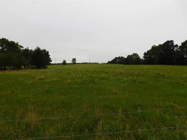 TBD Hwy 154 E, Diana, TX 75640 (MLS #20212385) :: Better Homes and Gardens Real Estate Infinity