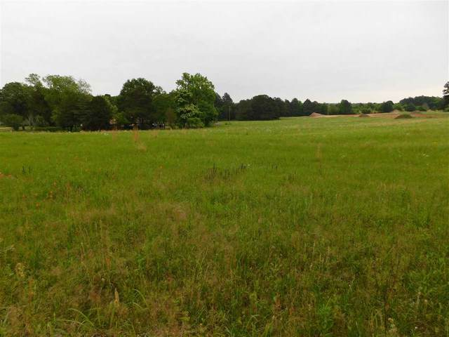 TBD Hawk Rd, Diana, TX 75640 (MLS #20212386) :: Better Homes and Gardens Real Estate Infinity