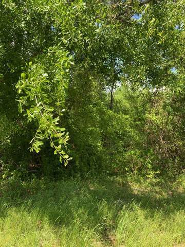 Ora Asa Johnson Rd., Harelton, TX 75651 (MLS #20212391) :: Better Homes and Gardens Real Estate Infinity