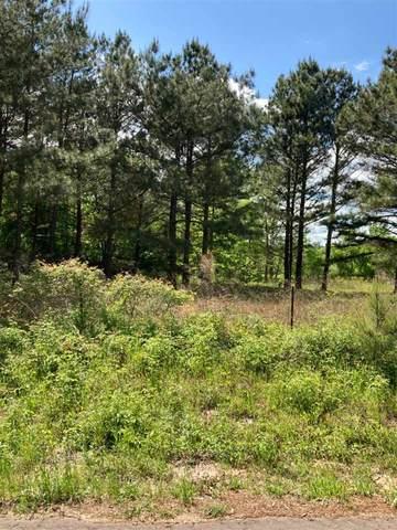 Ora Asa Johnson Rd., Harelton, TX 75651 (MLS #20212395) :: Better Homes and Gardens Real Estate Infinity