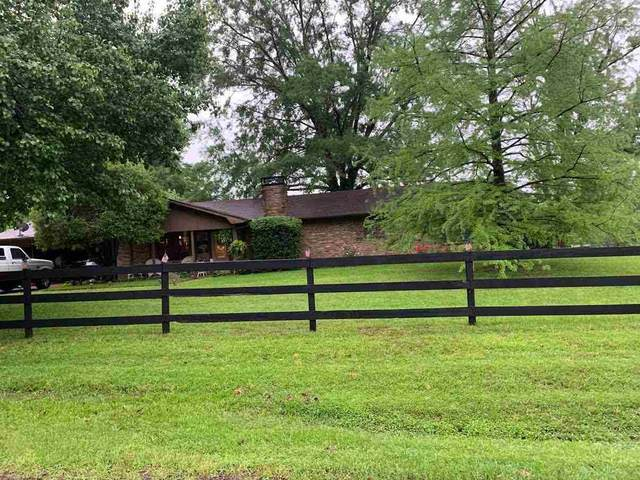 1071 Mont Hall Dr., Hallsville, TX 75650 (MLS #20212403) :: Better Homes and Gardens Real Estate Infinity