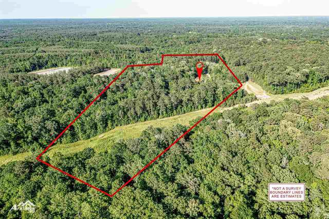4644 Fm 699, Tenaha, TX 75974 (MLS #20212459) :: Better Homes and Gardens Real Estate Infinity