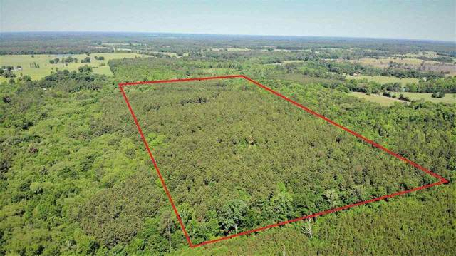 TBD Fm 250, Hughes Springs, TX 75656 (MLS #20212482) :: Better Homes and Gardens Real Estate Infinity
