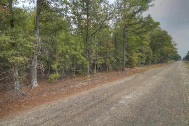 0 L.R. 43, Ashdown, AR 71822 (MLS #20212497) :: Better Homes and Gardens Real Estate Infinity