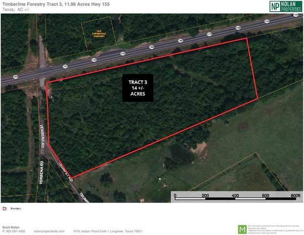 TBD Hwy 155 & Verbena - Tract 3, Ore City, TX 75683 (MLS #20212500) :: Better Homes and Gardens Real Estate Infinity
