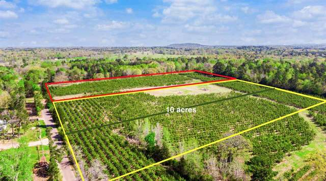 TBD 10 ACRES Hackberry Rd, Gilmer, TX 75644 (MLS #20212538) :: RE/MAX Professionals - The Burks Team