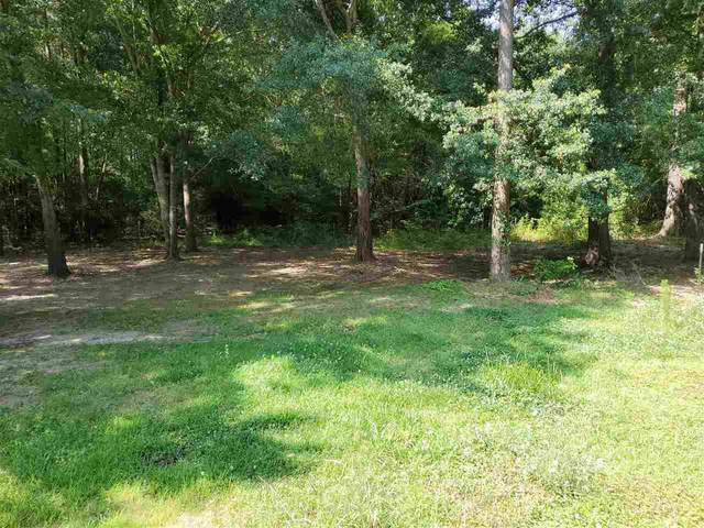 900 Cr 2703, Shelbyville, TX 75797 (MLS #20212591) :: Better Homes and Gardens Real Estate Infinity