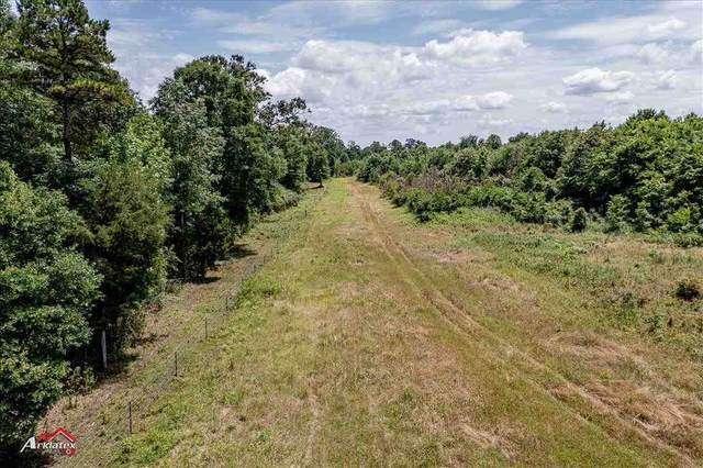 TBD Cr 120, Carthage, TX 75633 (MLS #20212701) :: Better Homes and Gardens Real Estate Infinity