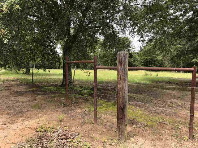 4486 S State Highway 155, Gilmer, TX 75644 (MLS #20212775) :: RE/MAX Professionals - The Burks Team