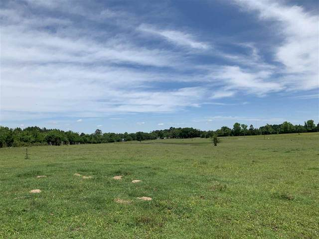 TBD N Caribou, Gilmer, TX 75644 (MLS #20212817) :: Better Homes and Gardens Real Estate Infinity