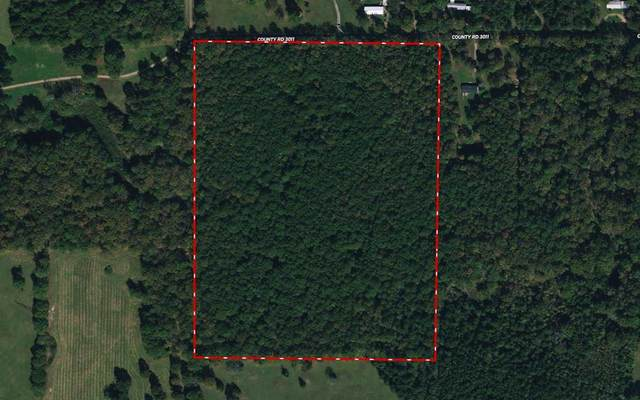 34 +/- ac Cr 3011, New Boston, TX 75570 (MLS #20212861) :: Better Homes and Gardens Real Estate Infinity