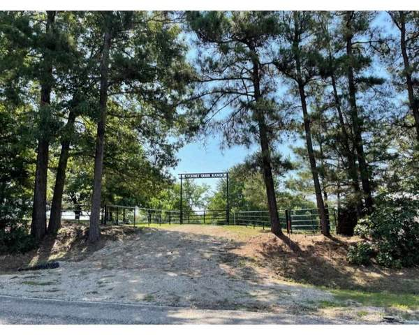 9192 Fm 2796, Gilmer, TX 75644 (MLS #20213226) :: Wood Real Estate Group