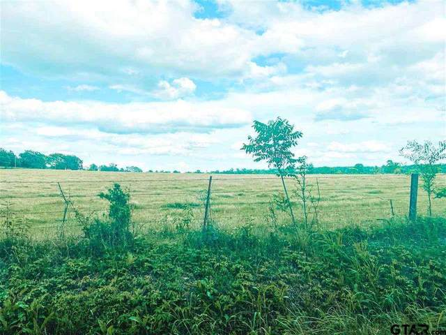 X County Road 1342, Pittsburg, TX 75686 (MLS #20213252) :: Better Homes and Gardens Real Estate Infinity