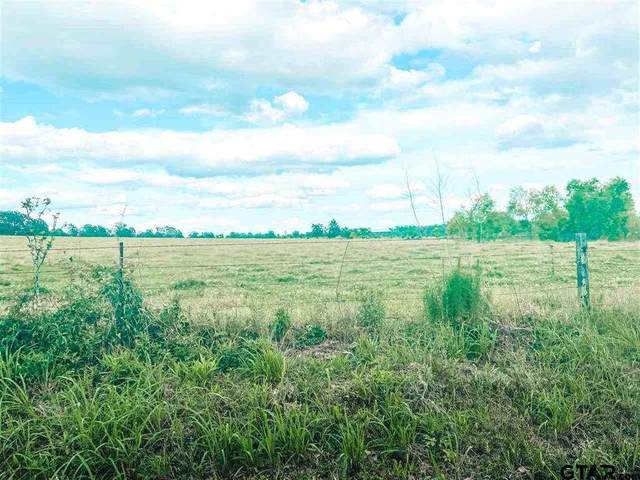 XX Cr 1342, Pittsburg, TX 75686 (MLS #20213253) :: Better Homes and Gardens Real Estate Infinity