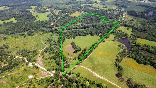 1199 Plum, Gilmer, TX 75644 (MLS #20213366) :: Better Homes and Gardens Real Estate Infinity