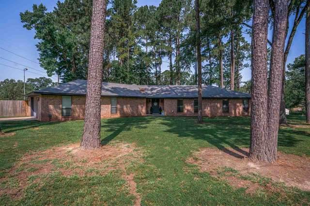 141 Fran, Diana, TX 75640 (MLS #20213832) :: Wood Real Estate Group