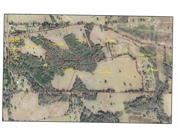 TBD LOT 8 Cr 2166, Troup, TX 75789 (MLS #20213835) :: Better Homes and Gardens Real Estate Infinity