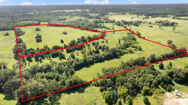 TBD LOT 9 Cr 2166, Troup, TX 75789 (MLS #20213836) :: Better Homes and Gardens Real Estate Infinity