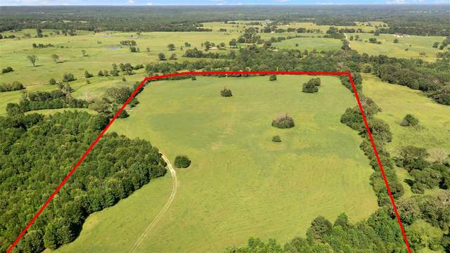 TBD LOT 10 Cr 4619, Troup, TX 75789 (MLS #20213837) :: Better Homes and Gardens Real Estate Infinity