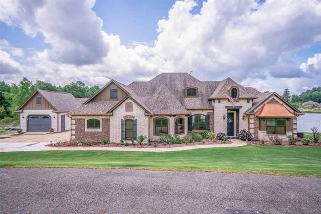 167 Grace Ln, Diana, TX 75640 (MLS #20213888) :: Wood Real Estate Group
