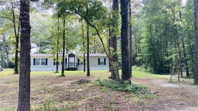202 Eagle Ridge Rd, Diana, TX 75640 (MLS #20213917) :: Wood Real Estate Group