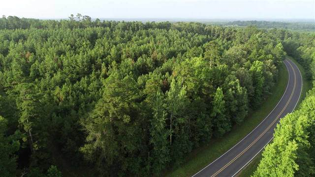TBD Fm 726 N 29 +/- Acres, Diana, TX 75640 (MLS #20213963) :: Wood Real Estate Group