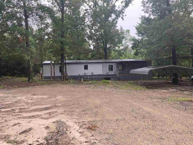 127 Cr 1585, Avinger, TX 75630 (MLS #20213979) :: Wood Real Estate Group