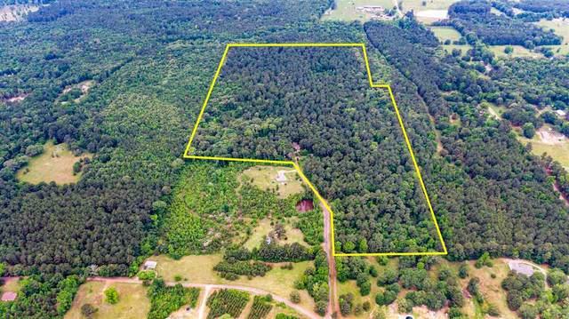 6348 Pr 2118, Gilmer, TX 75644 (MLS #20213990) :: Wood Real Estate Group