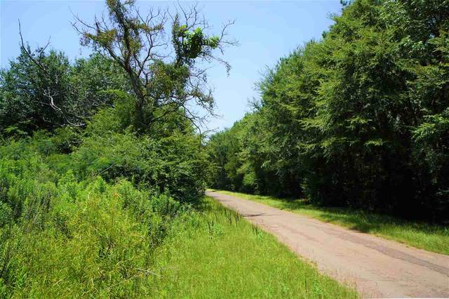 106 County Road 439, Joaquin, TX 75954 (MLS #20214141) :: Better Homes and Gardens Real Estate Infinity
