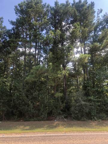 TBD W Sh 11, Linden, TX 75563 (MLS #20214447) :: Better Homes and Gardens Real Estate Infinity