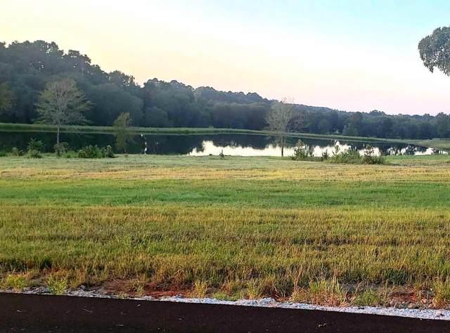 TBD Oakhill Lake Dr, Hallsville, TX 75650 (MLS #20215023) :: Better Homes and Gardens Real Estate Infinity