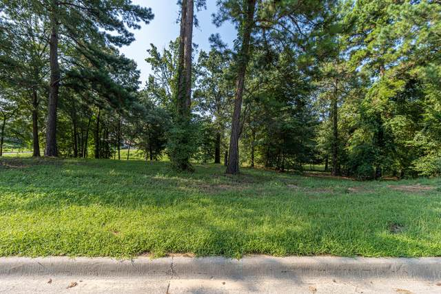 3676 Forrest Ct, Tyler, TX 75709 (MLS #20215061) :: Better Homes and Gardens Real Estate Infinity